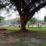 taiwan-2-thumbnail