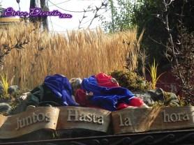 procesion-infantil-jesus-de-san-bartolo-2013-002