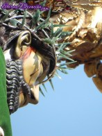 procesion-jesus-nazareno-caida-san-bartolo-2013-021