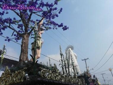 procesion-jesus-nazareno-merced-antigua-domingo-ramos-2013-042