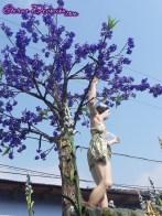 procesion-jesus-nazareno-merced-antigua-domingo-ramos-2013-043