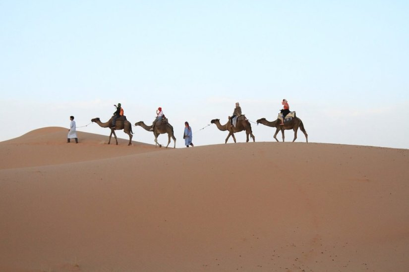 berber guides leading a small group of four people through the sand dunes of the Sahara Desert