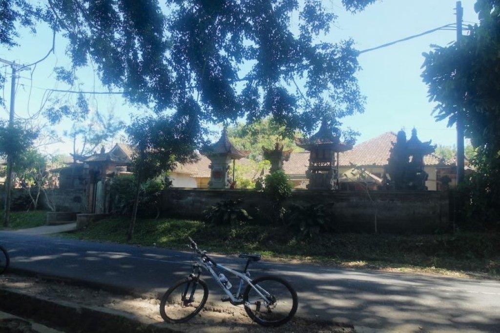 cycling in bali bike tour in ubud