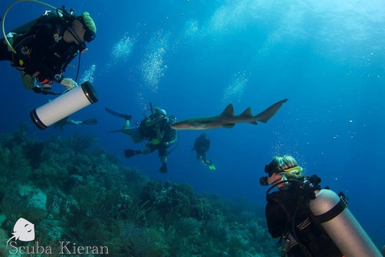where to scuba dive on a budget