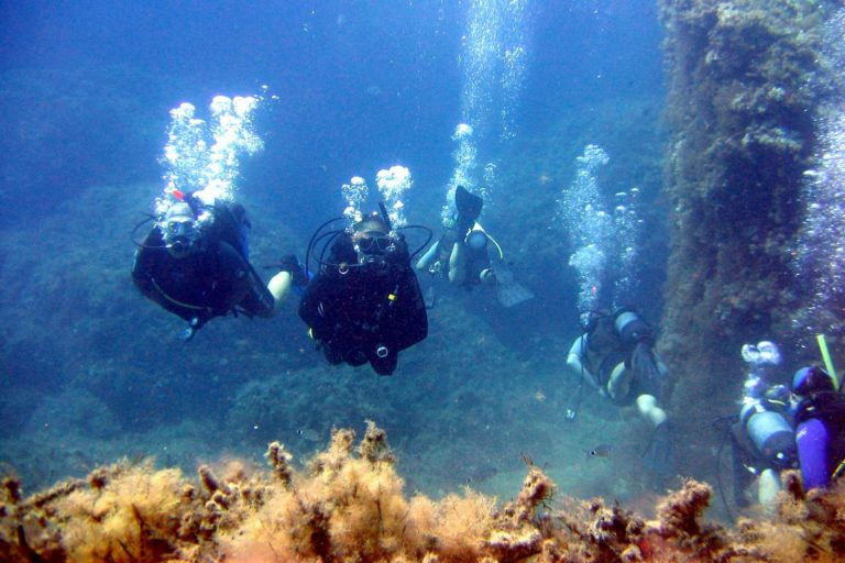 best places to learn how to dive