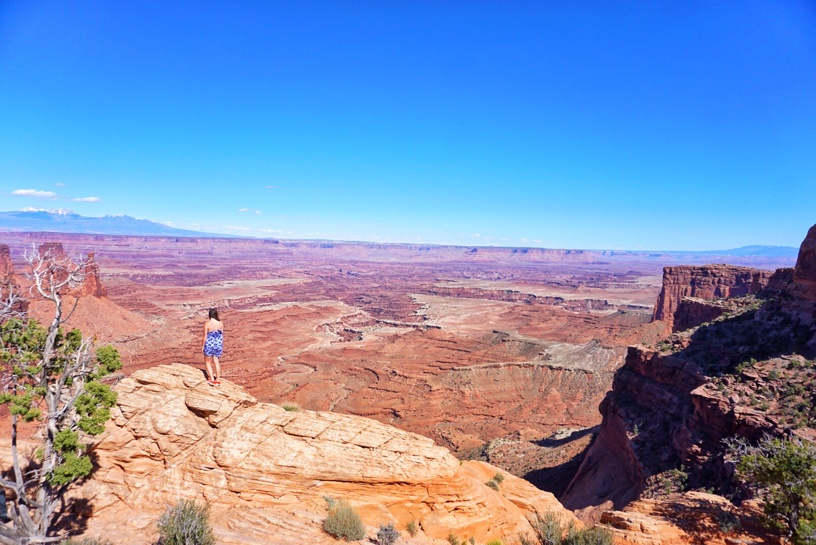 Allison standing at the edge in Canyonlands national park