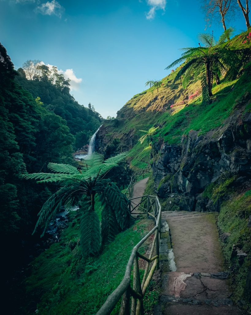 a trail leading to a waterfall with lots of tropical-looking plant life