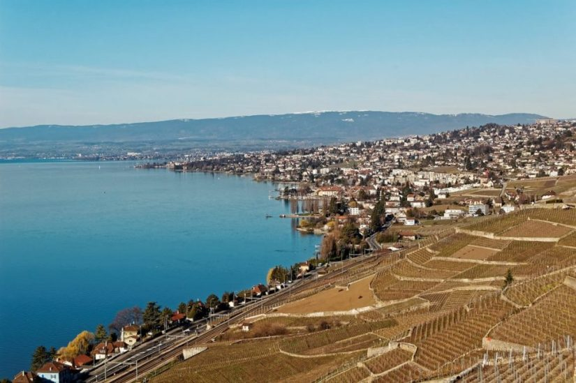 vineyards and a town in the distance overlooking the beautiful still blue waters of lake geneva in the town and unesco site of lavaux, a great geneva day trip