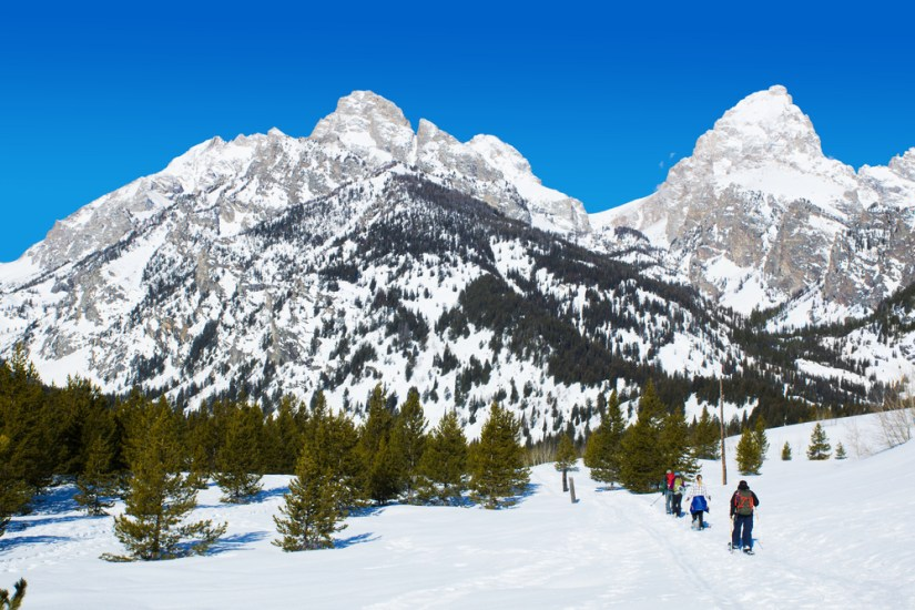 A family embarking together on a snowshoeing adventure in Grand Teton National Park away from camera towards the mountains.