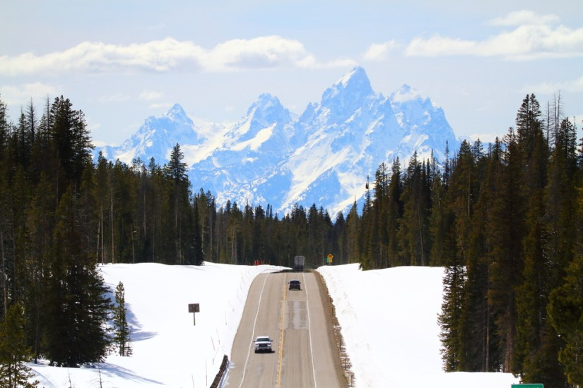 A view of a plowed road leading through a pine forest with a clear view of the Grand Teton winter range ahead