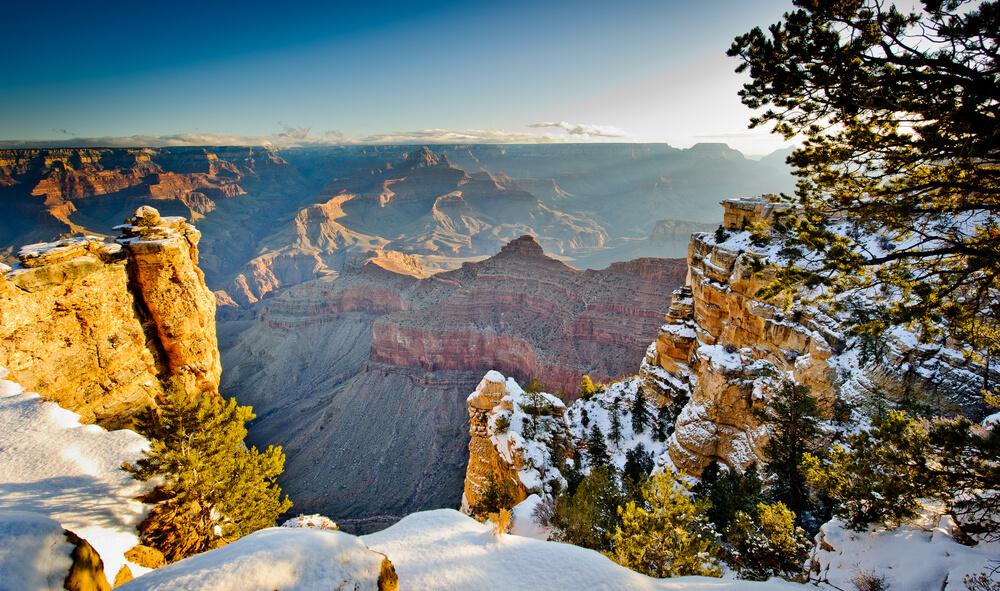 Grand Canyon in morning light covered in snow, with snow blanketing the layers of rock in the canyon as well as some of the trees.