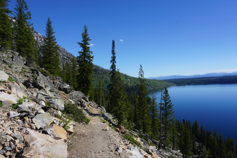 Hiking in Grand Teton National Park along the perimeter of Jenny Lake, a brilliant sapphire blue lake surrounded by rocks and pine trees.