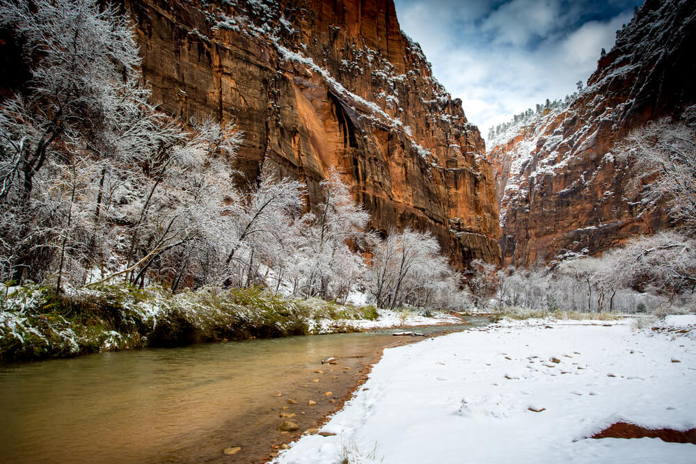 Snow on the valley floor of Zion National Park, next to a small river, with snow-covered trees and red cliff rock faces showing a winter Zion landscape