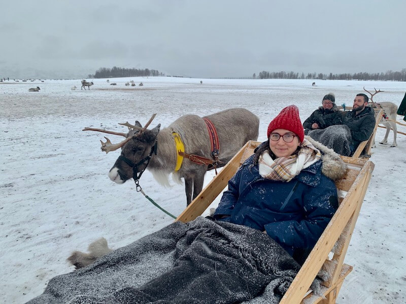Allison sitting in a reindeer sled with a blanket dusted in snow