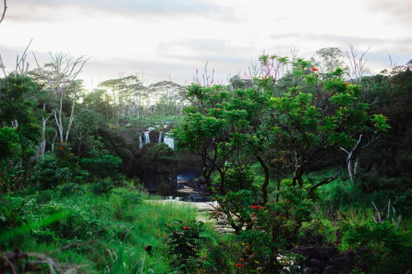 Sunset over the park with the waterfall and a lot of greenery and lava rocks. Boiling pots on the Big Island. Tropical forest.