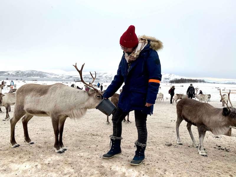 Allison feeding reindeer at the Sami reindeer camp