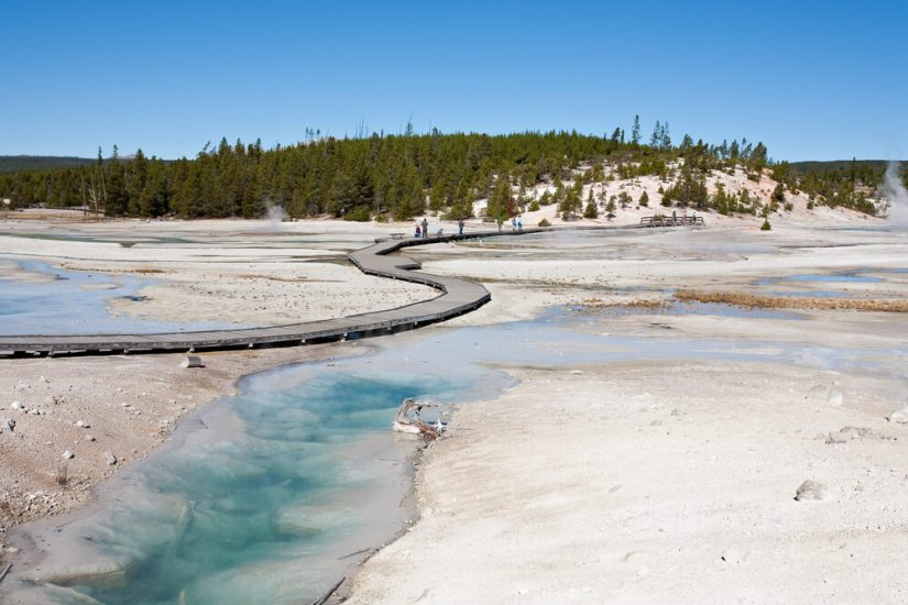 Turquoise and white geyser and geothermal area with a boardwalk trail and pine trees in the distance on a hill