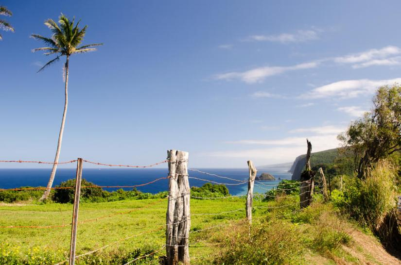 view from the area around hawi on the coast of hawaii