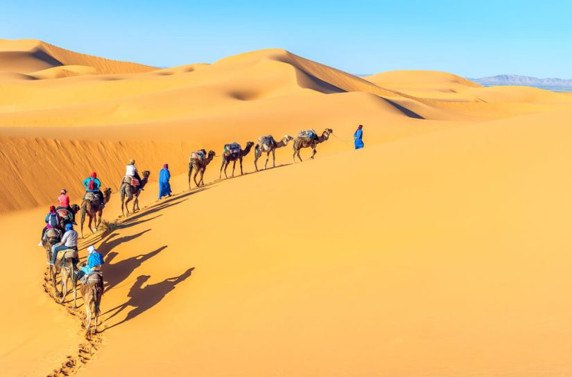People in the Sahara Desert on a camel trek through the sand dunes led by Berber guides