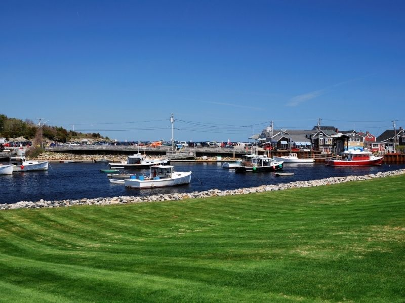 Grassy area looking over to perkins cove with boats in the marina