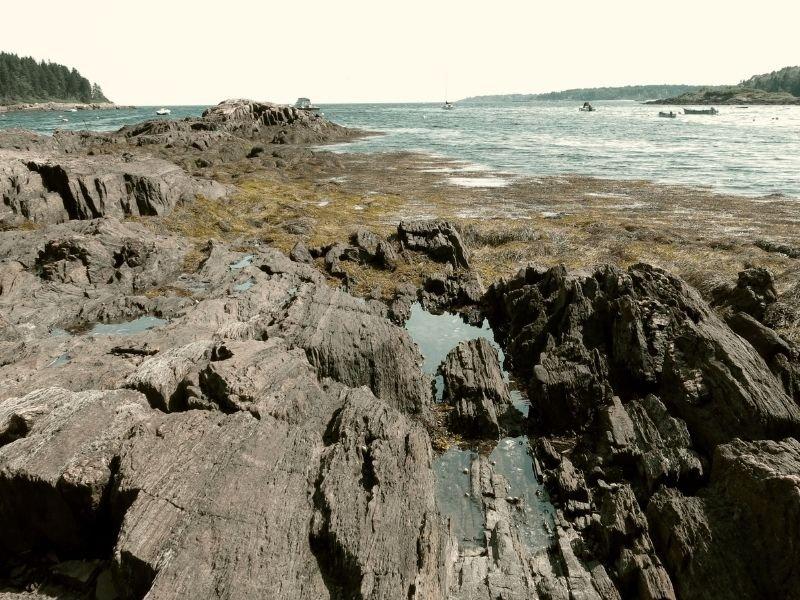 rocks on the ocean on orrs island