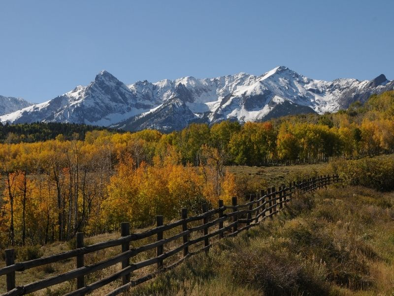 fence with lots of orange and yellow trees in front of snow-capped mountain peaks in colorado in the fall