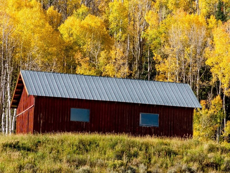 a red barn against the yellow aspen trees in the mountains near steamboat springs colorado