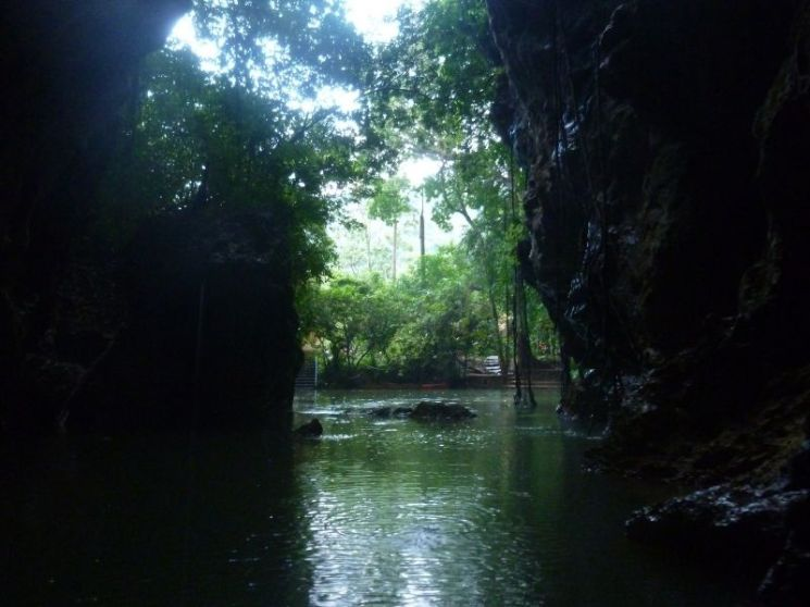 dark cave entrance with lots of water and trees visible through the mouth of the cave