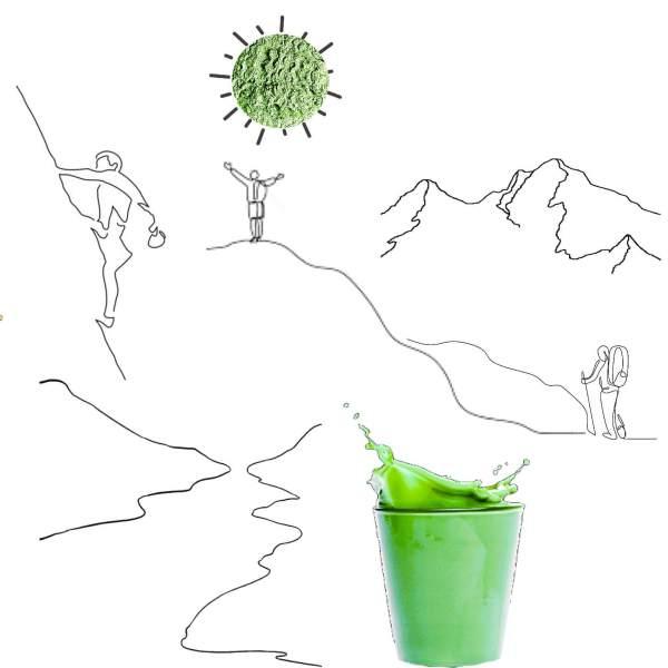 Lean Green Protein – Organic Powder