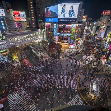 5 cose da fare a Tokyo a maggio