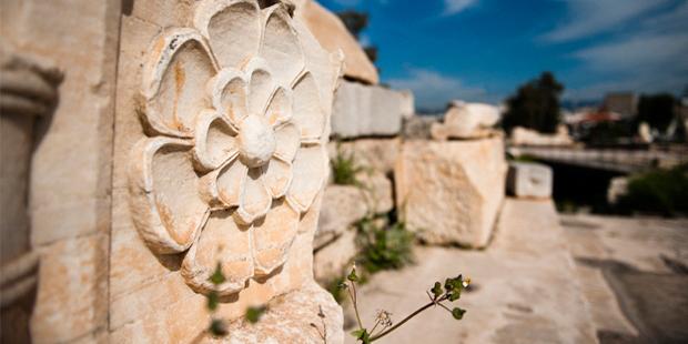 eleusis-flower Eternal Greece Ltd