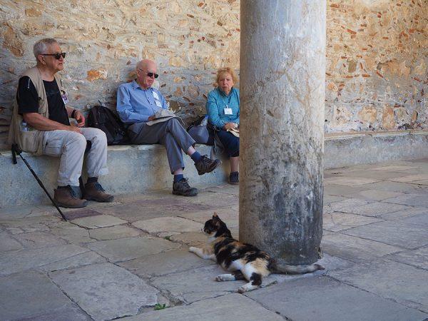 Mystras Peloponnese Eric CB Cauchi Eternal Greece Ltd cat