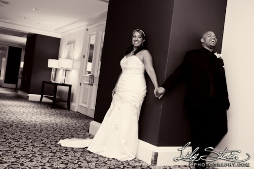 www.LilySteinPhotography.com