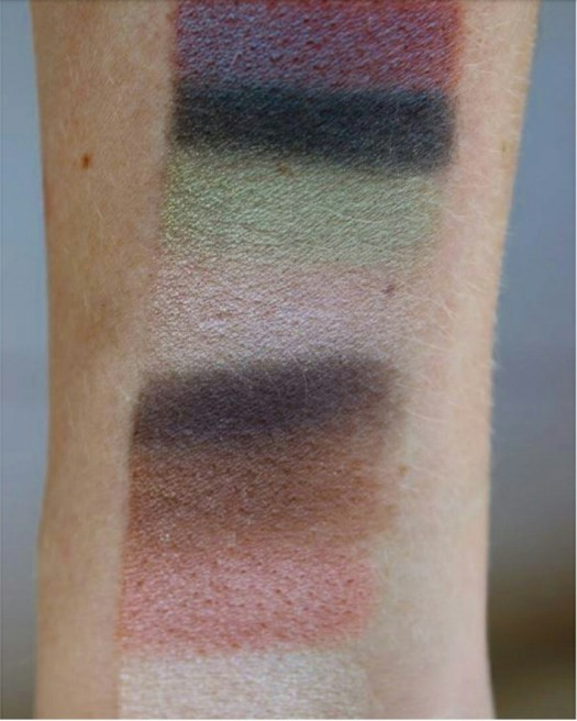 Affordable Makeup: Wet and Wild eye palletes