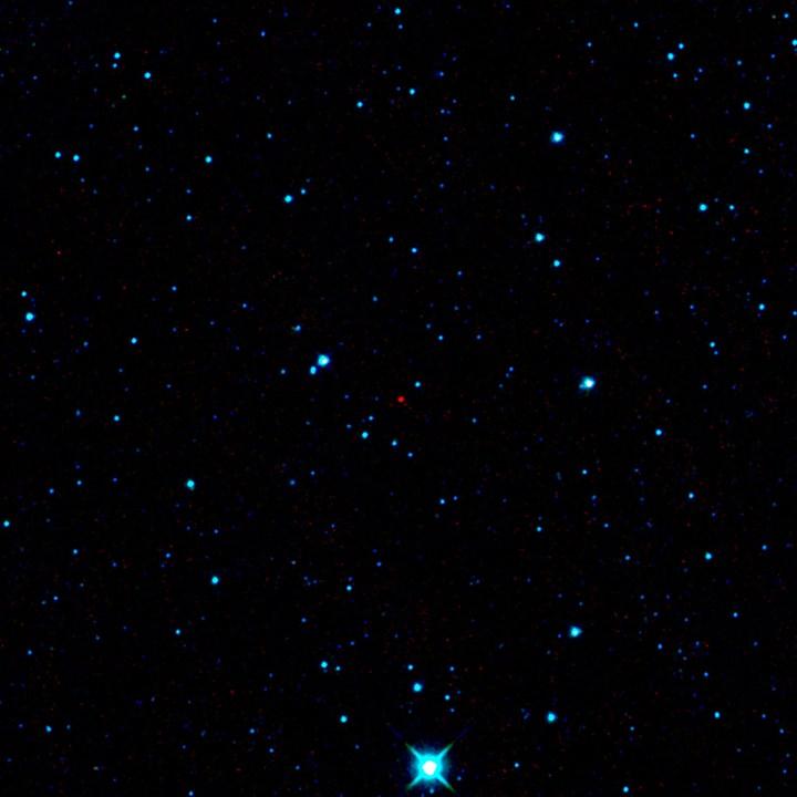 O asteróide recém descoberto pelo WISE, 2010 AB78, é o ponto vermelho no centro desta imagem. Crédito: NASA/programa WISE