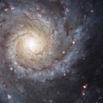 Cientistas elucidam a história da metamorfose das galáxias desde o início do Universo até hoje