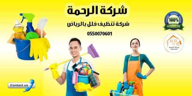 خادمات شركة تنظيف فلل بالرياض