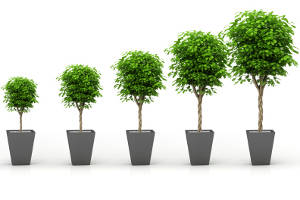 ESG Indexing sees record growth, reports MSCI