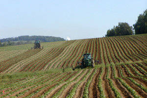 Global trends support outlook for agribusiness ETFs