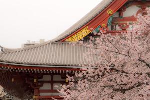 Daiwa launches Japan ESG ETF tracking FTSE Blossom index