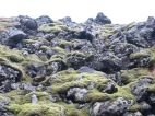 """The aforementioned """"velvety, moss-cloaked lava flows."""""""