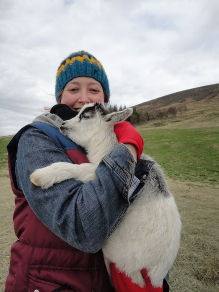 I feel confident in saying that nearly nothing is better than hugging a baby goat.