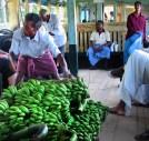 Kerala Embraces Organic