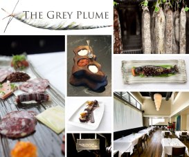 the-grey-plume-feature