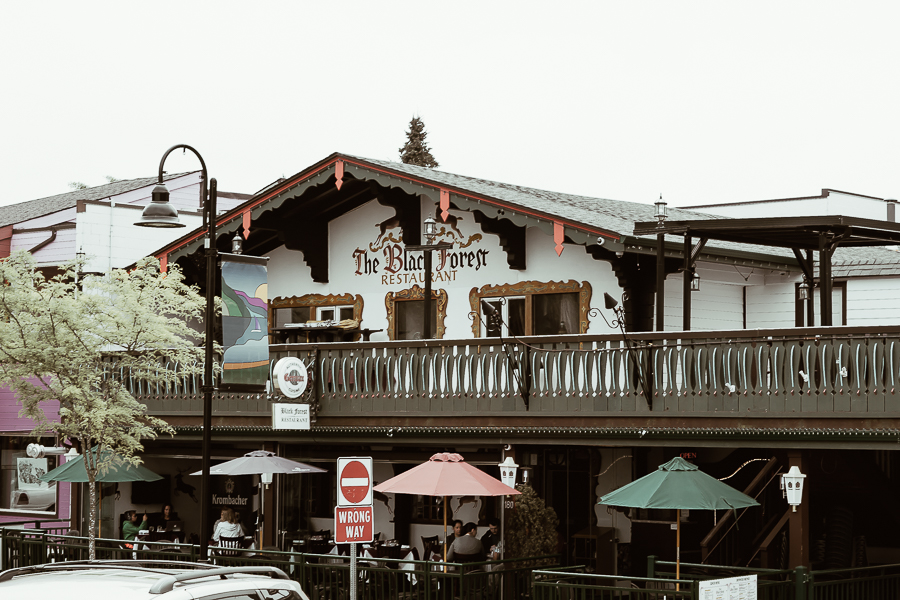harrison-hot-springs-resort-bc-black-forest-restaurant