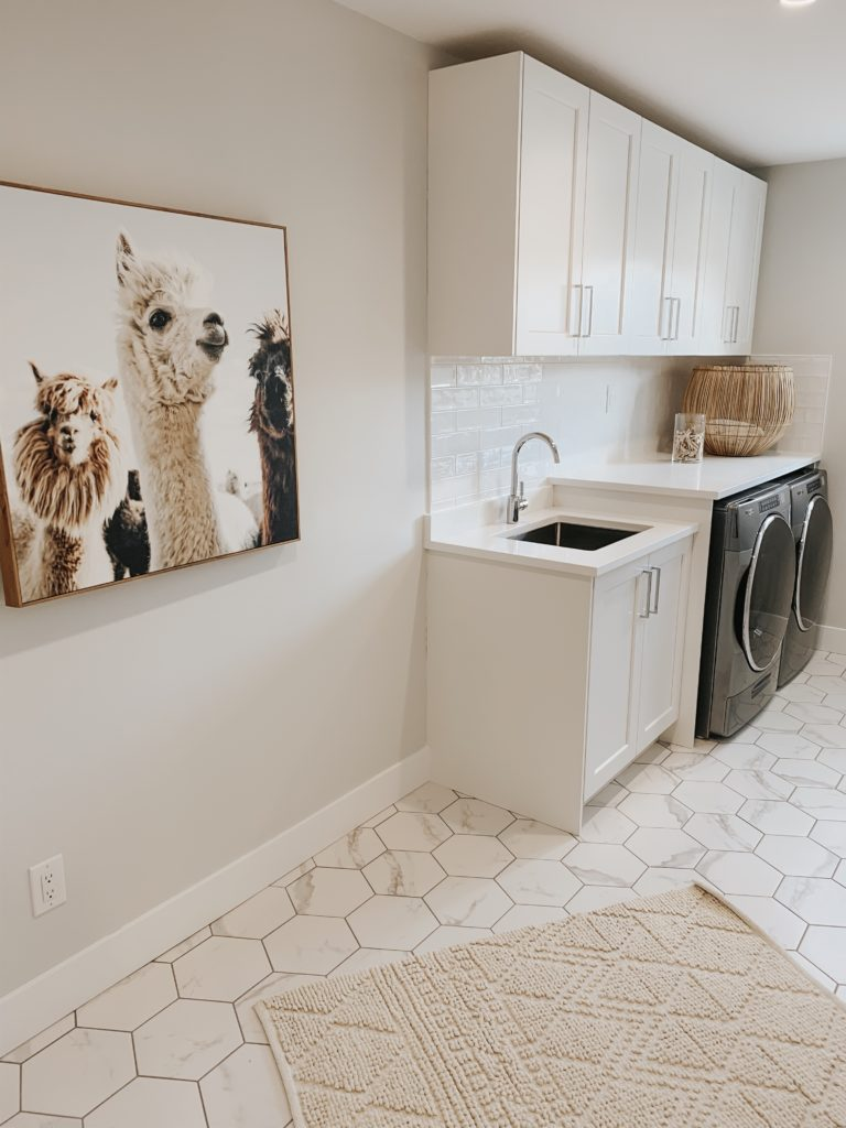laundry-room-langley-bc