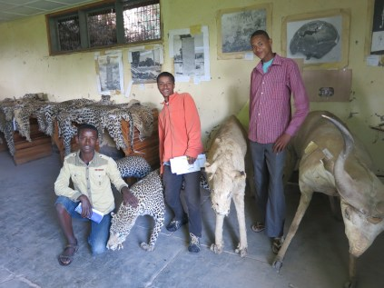 Students with the animals of Ethiopia!