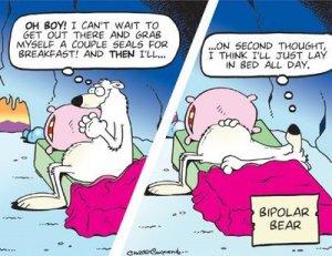 Bi-Polar verwijst niet naar Noord- & Zuidpool, maar is synoniem voor manisch-depressief