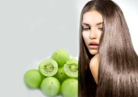 Natural Herbal Hair Dye At Home  Ethnic Health Court