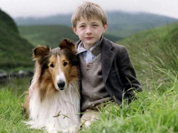 2-lassie